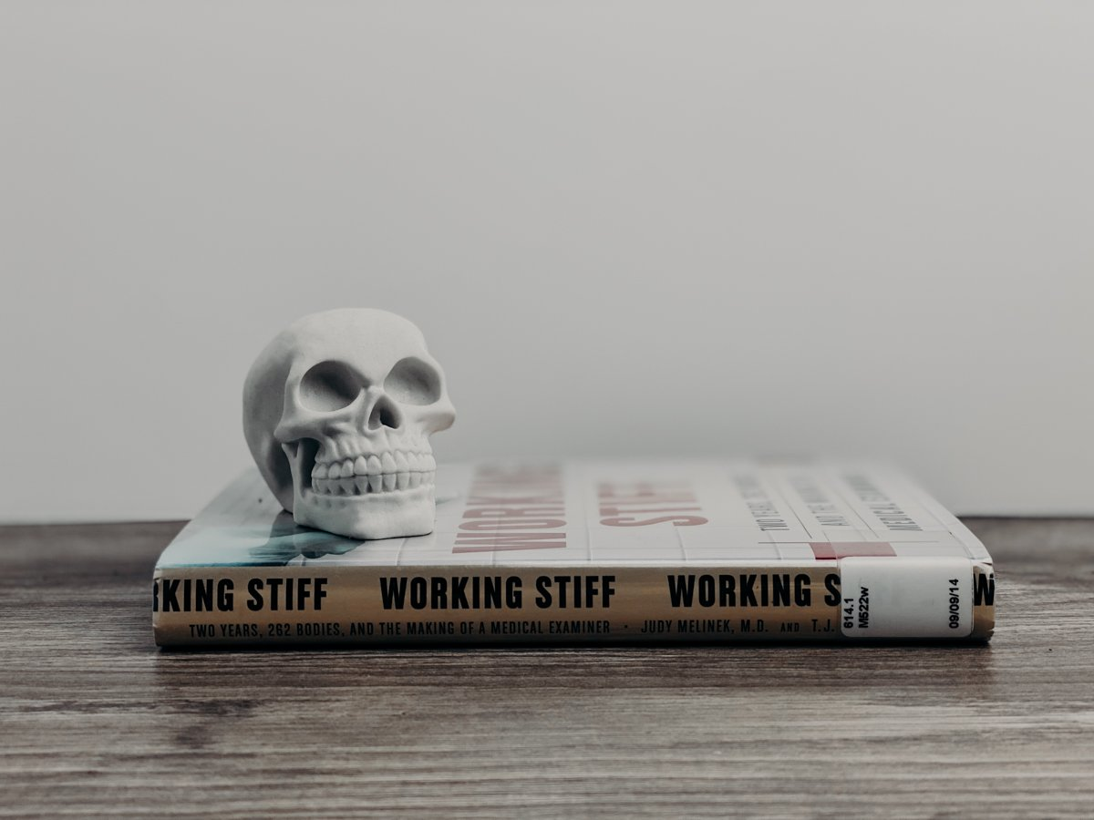 Working Stiff: The Perfect Non-Fiction Book for the Morbidly Curious
