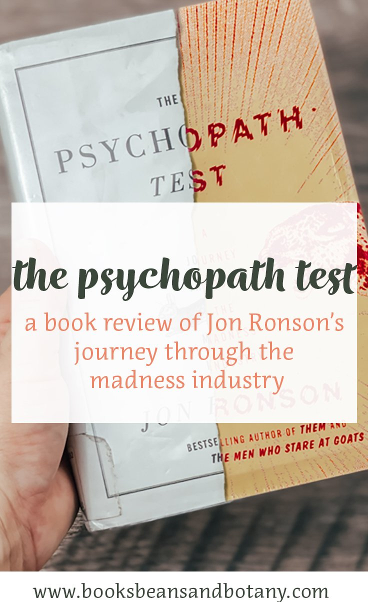 the psychopath test book review