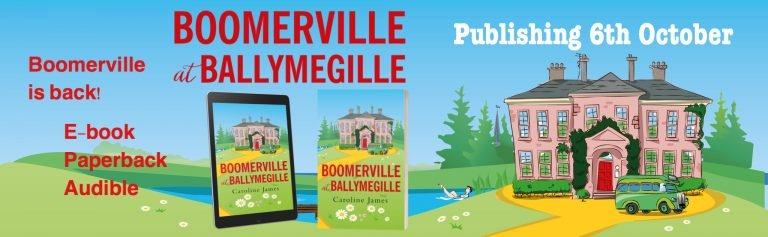 Boomerville at Ballymegille by Caroline James
