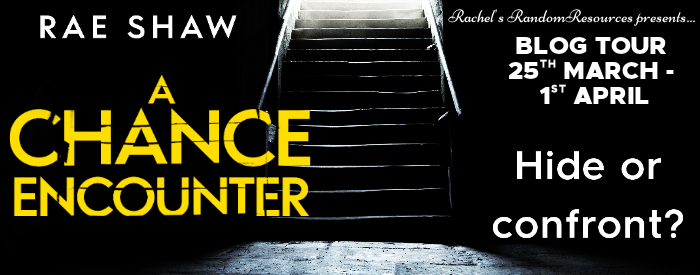 Read more about the article A Chance Encounter by Rae Shaw
